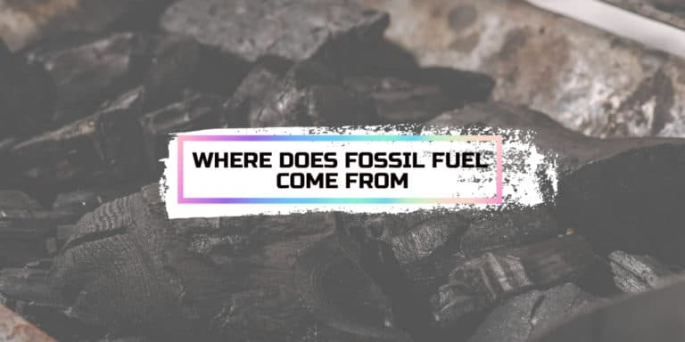 Where Does Fossil Fuel Come from?
